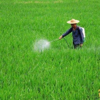 农药行业化工泵应用案例